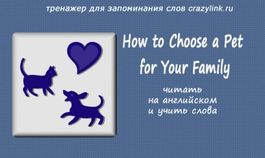 How to Choose a Pet for Your Family. Ч.1