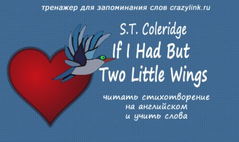 If I Had But Two Little Wings