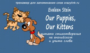 E. Stein - Our puppies