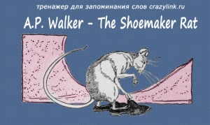 The Shoemaker Rat