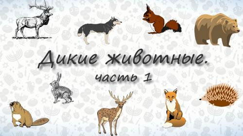 Животные на иврите. Дикие животные. Часть 1