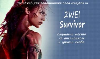 2WEI — Survivor