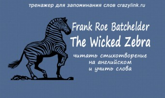 The Wicked Zebra