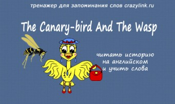 The Canary-bird And The Wasp