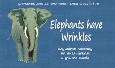 Elephants Have Wrinkles