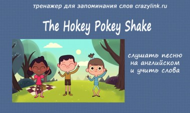 The Hokey Pokey Shake