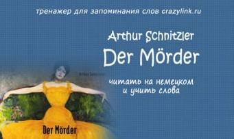 Убийца. Артур Шницлер