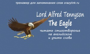 Alfred Tennyson - The Eagle